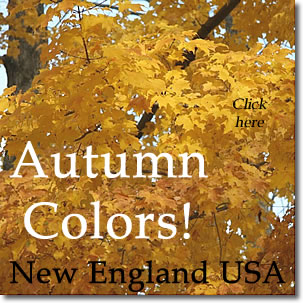 Fall Foliage Tours in New England, by NewEnglandTravelPlanner.com