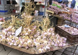 Garlic, Beaune, France