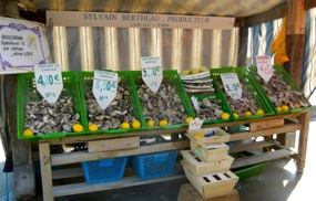 Oysters for sale, Cancale, Brittany, France