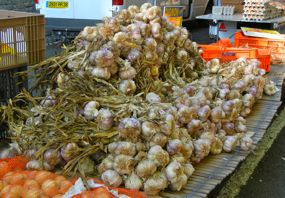 Garlic, Amboise Market, France