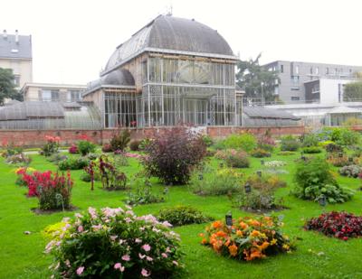 Le jardin des plantes nantes france for Jardin des plantes nantes