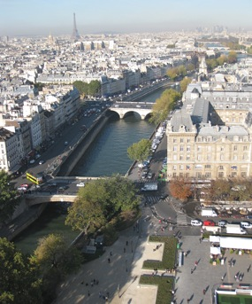 View from the Towers of Notre-Dame, Paris