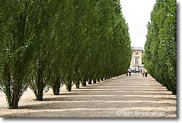 Allee, Grand Trianon, Versailles, France
