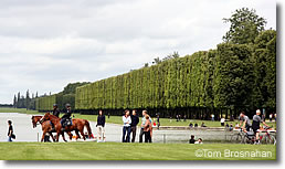 Versailles gardens with horses, France